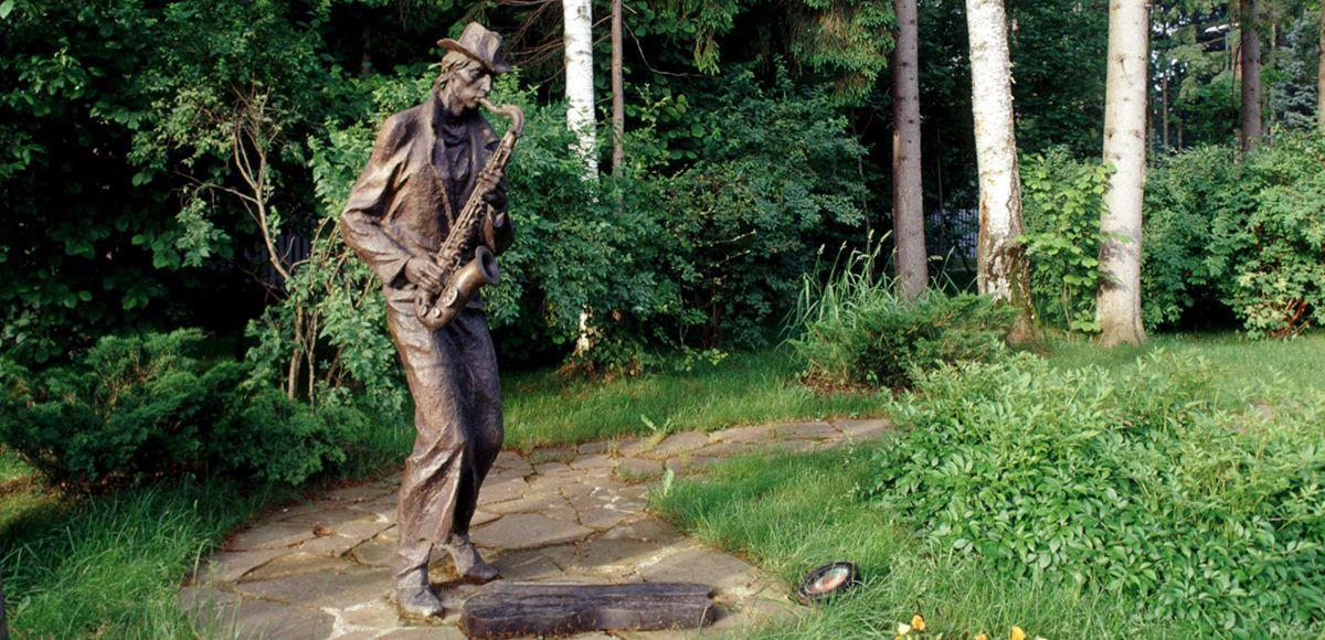 Саксофонист, поселок Николино